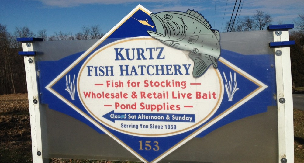 Live fishing bait near me for Fish hatchery near me